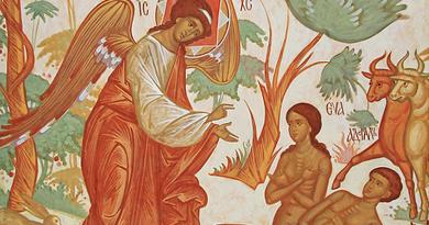 Giáo huấn Hội thánh Công giáo về phái tính